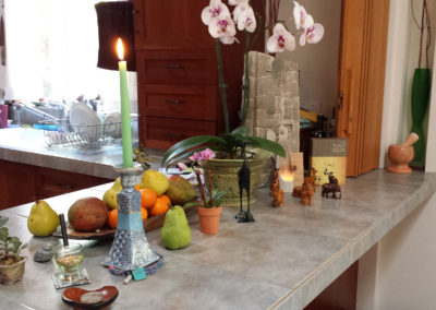 Everyday Alter - Counter top of Fruits, Flowers & Animals, Inspiration, Support, Teachings, Enjoyment, Everyday Life